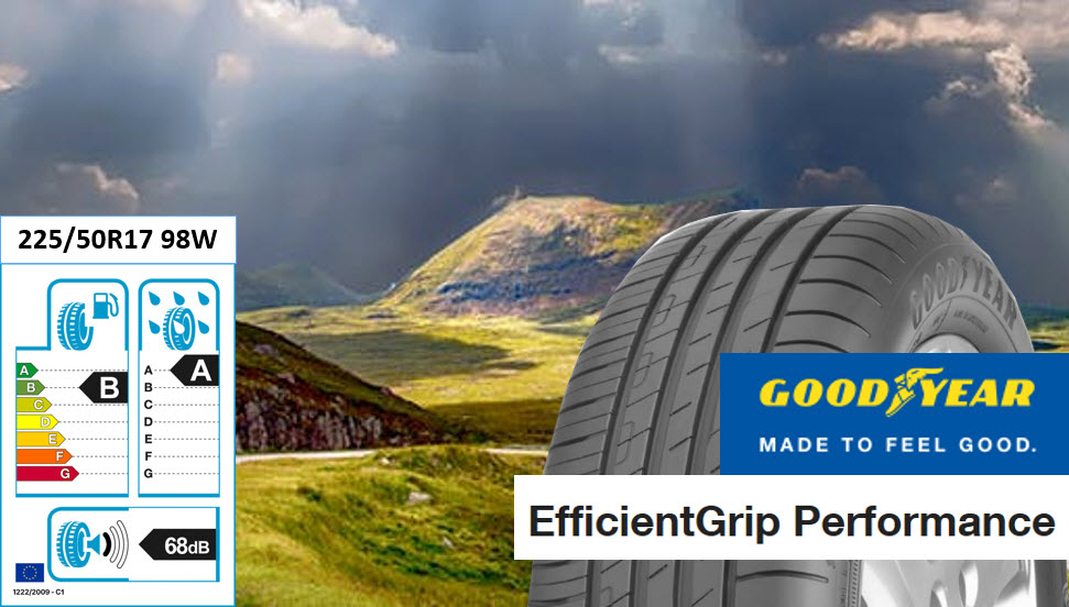 Goodyear Effifientgrip Performance